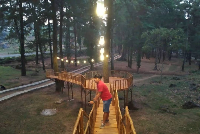 Asyiknya Suasana Wisata Woodland Kuningan Jawa Barat