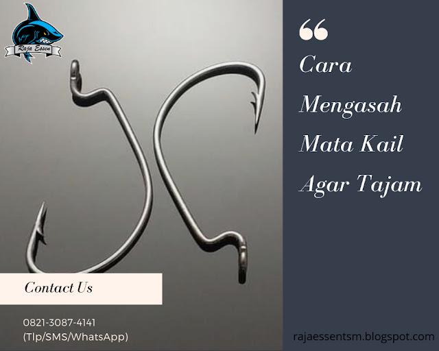https://rajaessentsm.blogspot.com/2019/01/tips-mengasah-mata-kail-agar-tajam.html