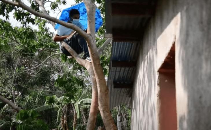 No tiene Internet en casa y se sube a un árbol para poder continuar con sus clases virtuales