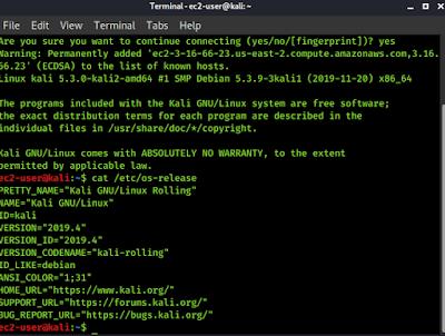 Kali Linux AWS Release