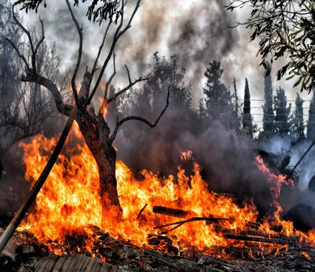 Πυρκαγιά στο Λουτράκι