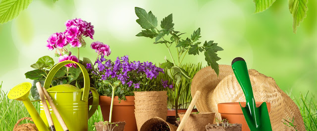 Top Reasons to Go For Online Purchase of Garden Supplies in Melbourne