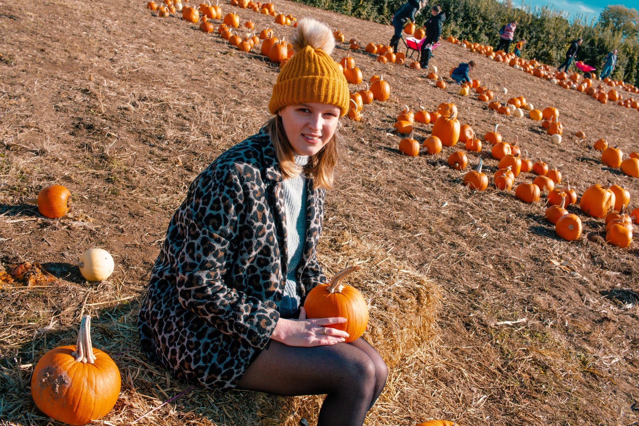 Girl with Autumn Pumpkins at Pumpkin Patch from Fall Pumpkin Picking Autumn Activities Blog Post