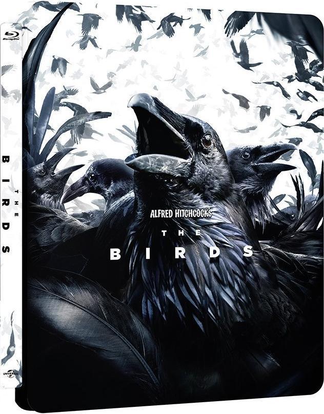 The Birds 1963 x264 720p Esub BluRay Dual Audio English Hindi GOPI SAHI