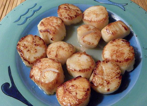 plate of freshly seared scallops
