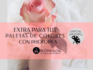Extra Para Tus Paletas De Colores Con Photopea