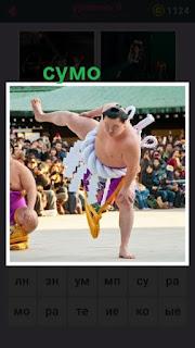 на арене находятся борцы которые занимаются сумо