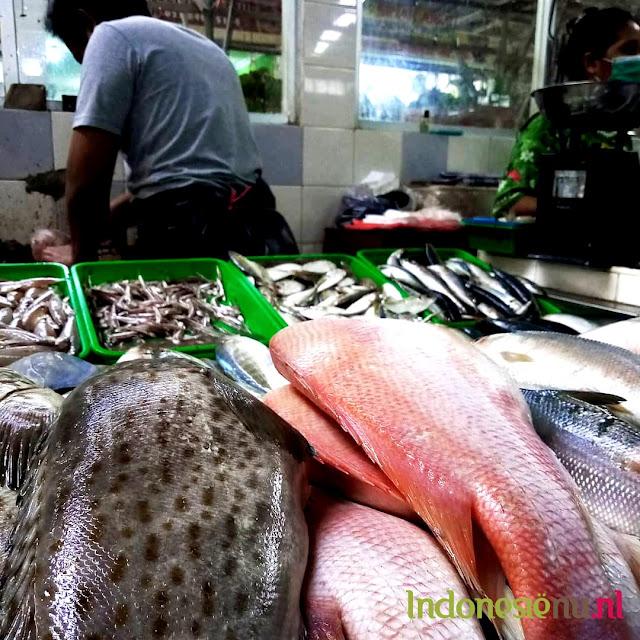 markt vis jakarta bogor kota wisata