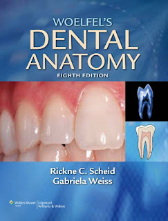 Woelfel's Dental Anatomy Its Relevance to Dentistry 8th Edition