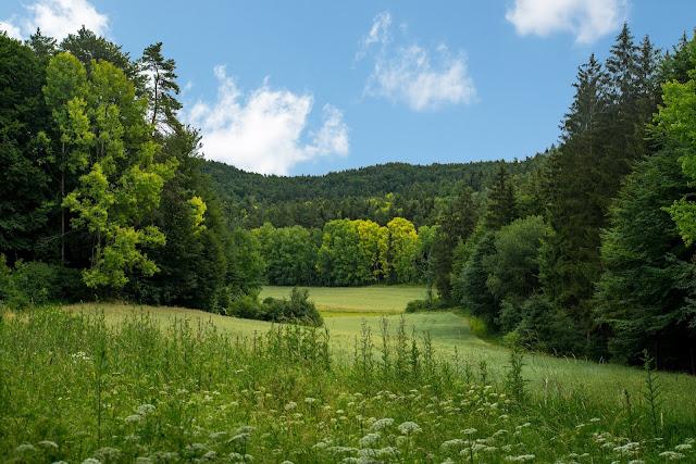 Erzweg Etappe 5 Etzelwang – Lichtenegg  Wandern Amberg-Sulzbacherland 04