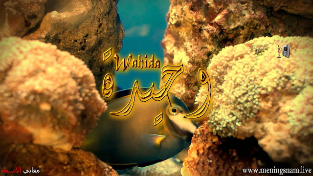 معنى اسم وحيدة وصفات حاملة هذا الإسم Wahida