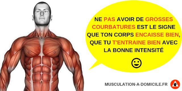 musculation à domicile pas de courbatures après musculation signe d'entrainement correct