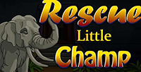 Play NsrGames Rescue Little Ch…