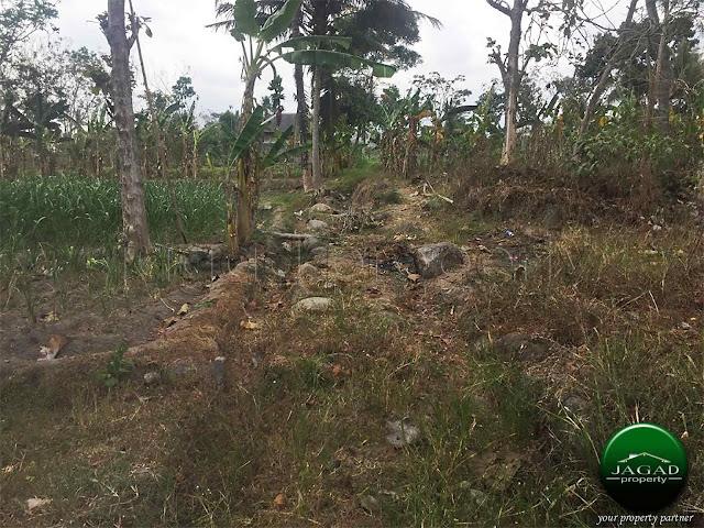 Tanah Sawah Luas jalan Palagan Km 13