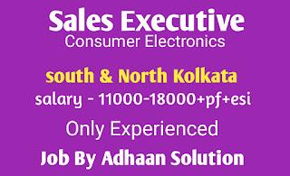 Sales Executive -Consumer Electronics