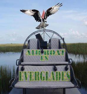 everglades airboat tours tripadvisor airboateverglades