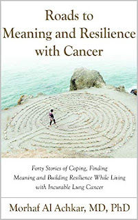 Roads to Meaning and Resilience: Forty Stories of Coping, Finding Meaning, and Building Resilience While Living with Incurable Lung Cancer book