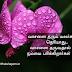 Tamil Kavithai | Cute Flower Kavithai