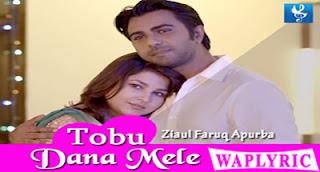Tobu Dana Mele Song Lyrics Ziaul Faruq Apurba