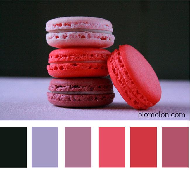 paleta-de-colores-imagen-8
