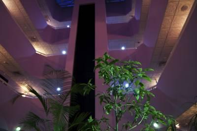 فندق نيو بينينسولا