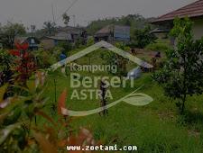 Kampung Hijau Telaga Murni, Menghijau Berkat Program Astra