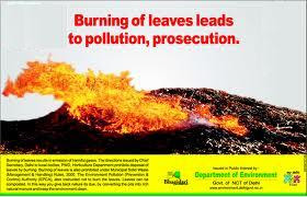 Burning Fallen Tree Leaves is Injurious to Health