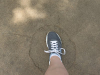 Image of Barbara's tennis shoe inside the much larger impression of a giraffe's hoof.