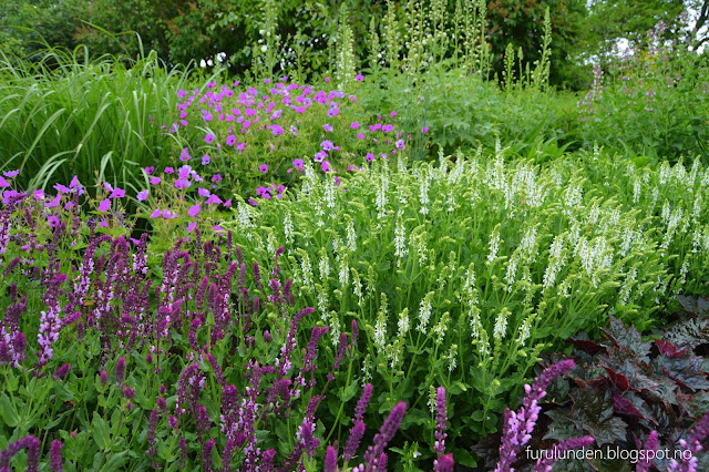 Historikk og oppskrift på en cottage garden. Så velarrangert og engelskinspirerte bed.