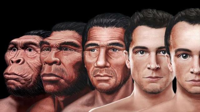 Científicos revelan cómo será nuestro rostro en el futuro