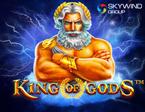 Slot Skywind Group King of Gods