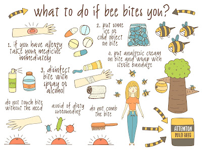infographic what to do if a bee bites?