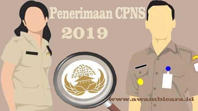 penerimaan cpns pppk 2019