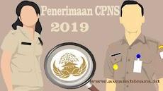 Siap-siap! 2019 Pemerintah Kembali Membuka Penerimaan CPNS & PPPK