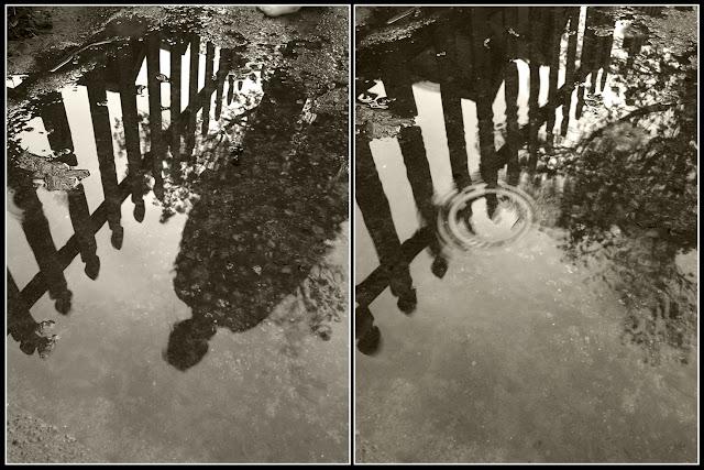 iPhoto; iPhonography