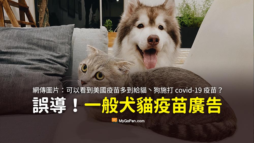 美國疫苗多到給貓丶狗施打 covid-19 疫苗 照片 謠言 柯文哲