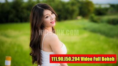 Update Terbaru, Link 111.90.l50.204 Video Full Bokeh Tanpa VPN