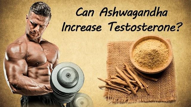 Can Ashwagandha Increase Testosterone?