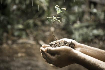 Bacaan Doa Ketika hujan dan Manfaat Hujan Untuk Kehidupan Manusia