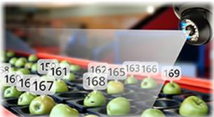 Peran Computer Vision Software guna memantau dan mengontrol kualitas produk.