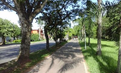 A foto mostra a ciclovia no parque da cidade, bem arborizada e com muito ar puro, mas está sem pessoas para utilizar em razão do sedentarismo.