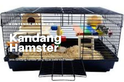 jenis Kandang Hamster