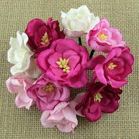 http://www.scrappasja.pl/p10735,saa-421-magnolie-rozowe-mix-5-szt.html
