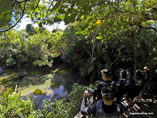 flutuação no Rio Sucuri, Bonito