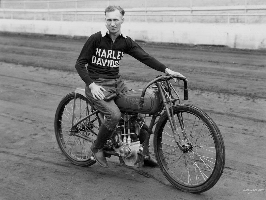 The history of harley davidson motorcycle - Essay Sample