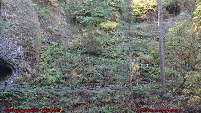 Lower North Falls Trail