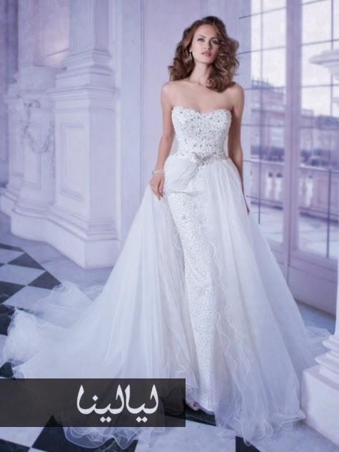 e788b53ce العالم بين يديك: فساتين زفاف ديمتريوس هل ستختارين فستاناً منهم؟