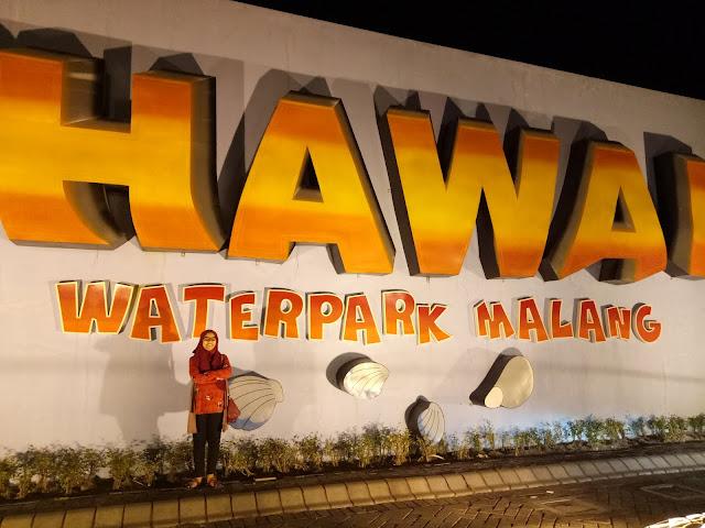 Hawai Night Paradise