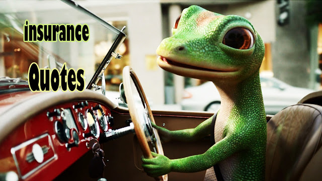Compare Geico Insurance Quotes - The Best Place to Get Geico Insurance Quotes