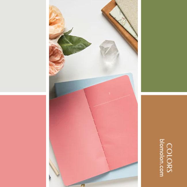 variedad_en_color_combinacion_19